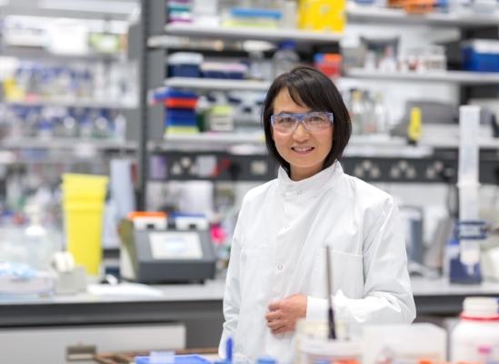 Professor Xiaodong Zhang