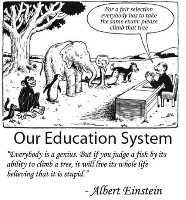 Unfair-examinationseinstein.png