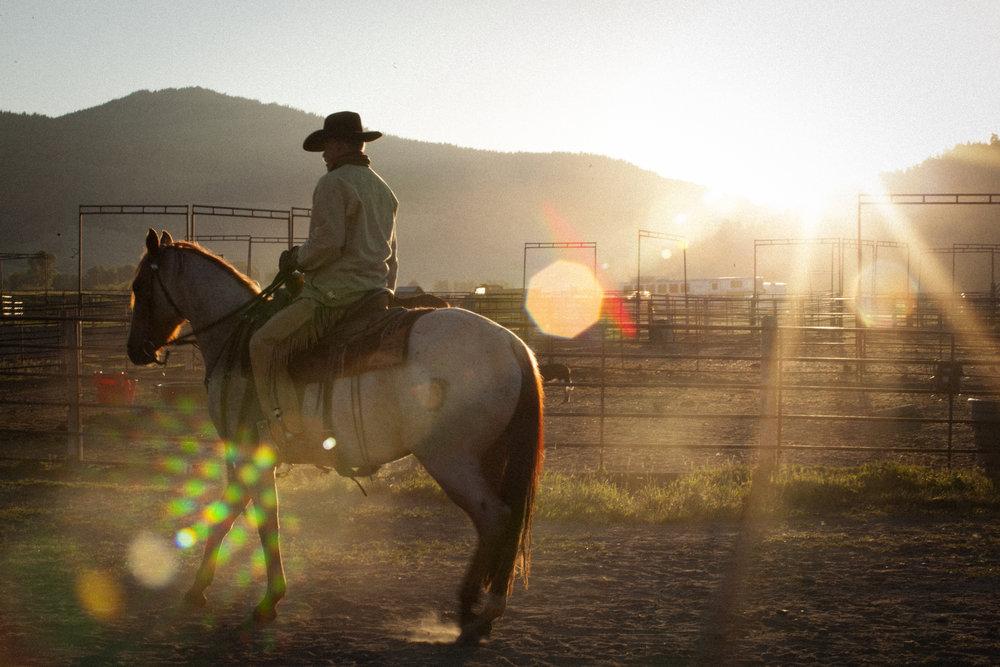 sunrise horse.jpg