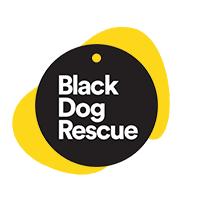 Black dog-yellow logo.png