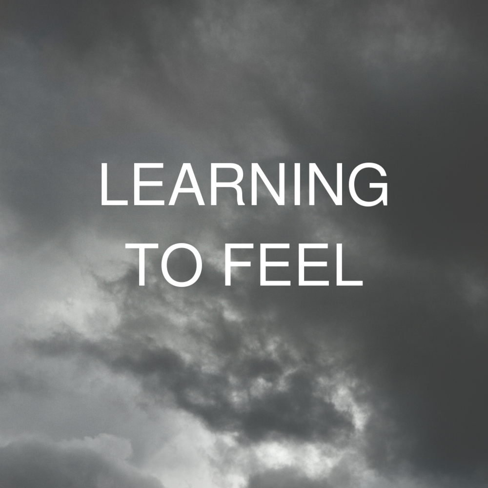 Learning to Feel Event Logo