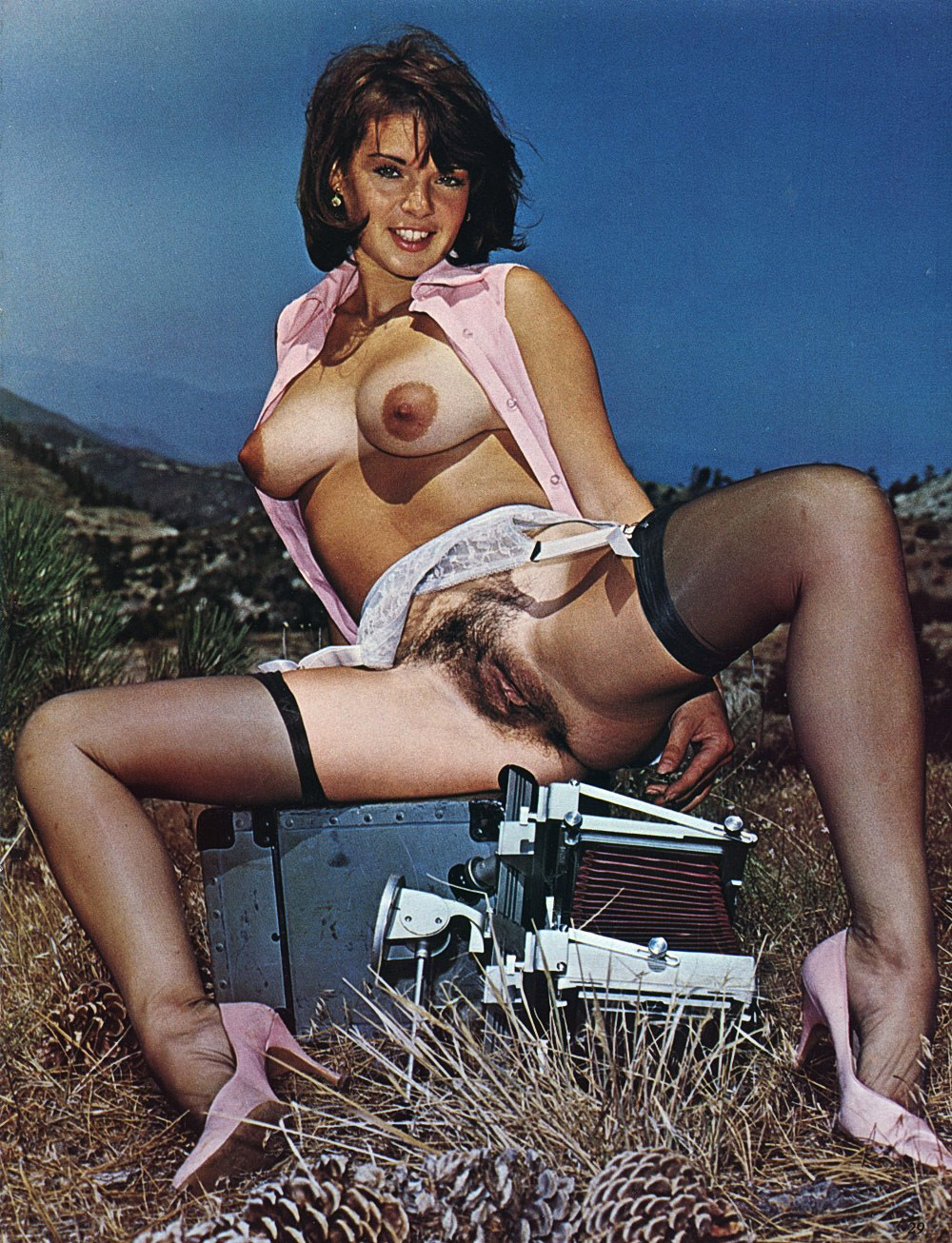 vintage-pinup-hairy-girl-in-stockings-with-camera.jpg