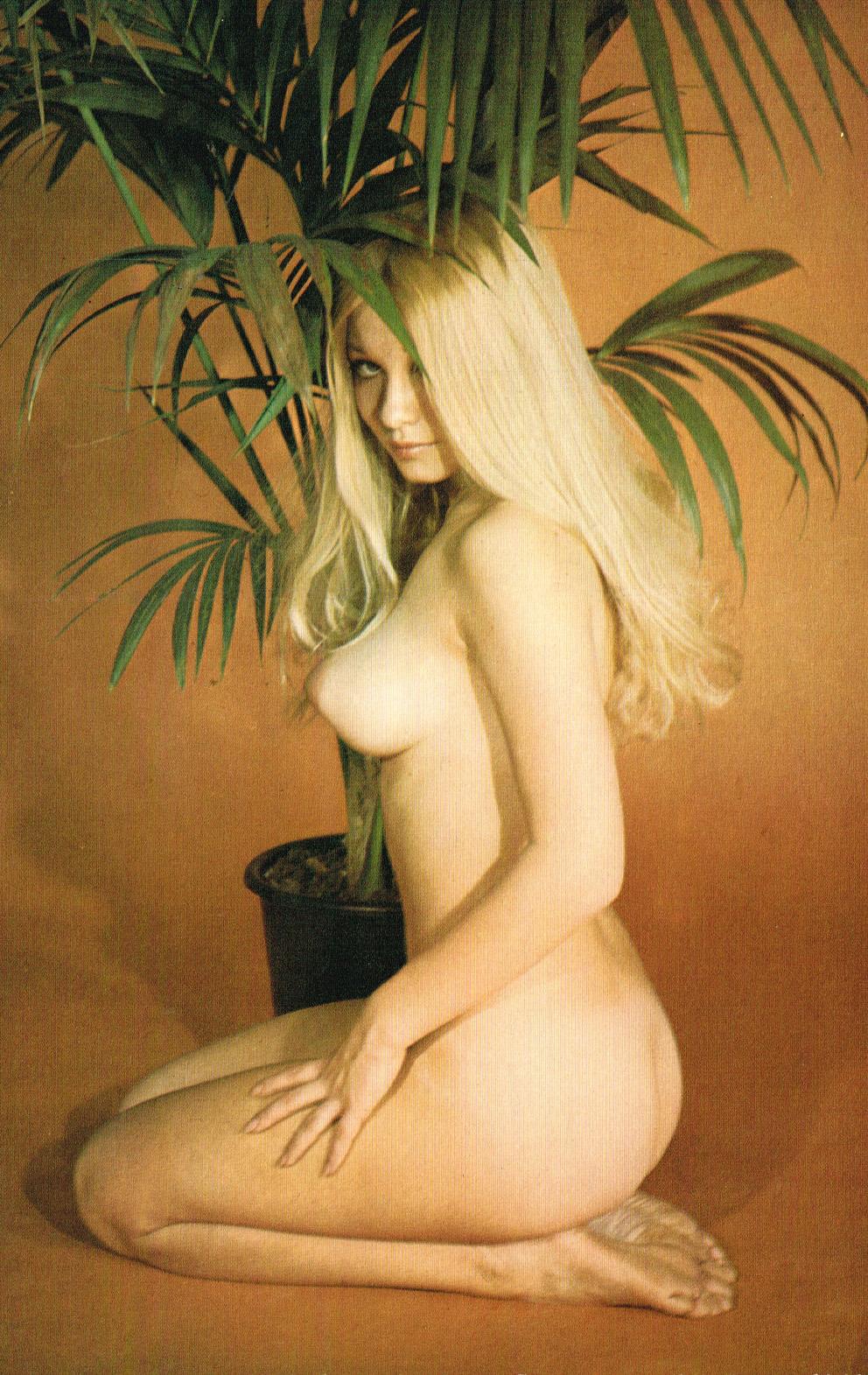 Dorit-Henk-Daily-Girl-magazine-1972