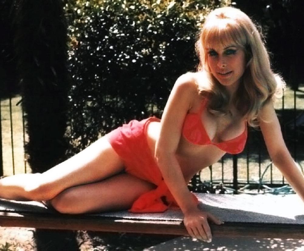Barbara Eden 14.jpg