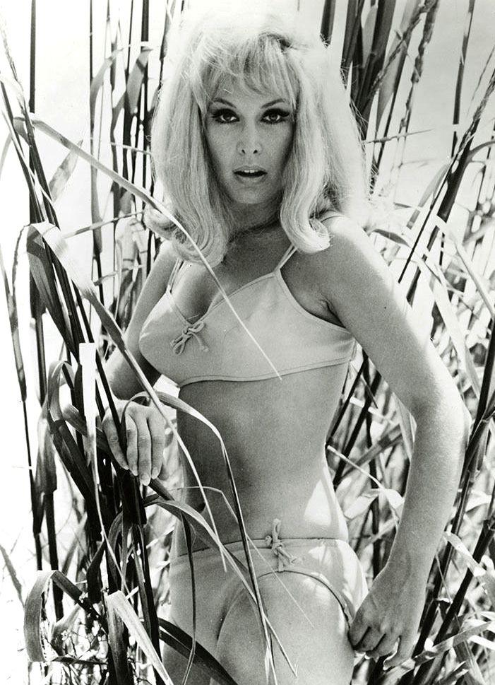 Barbara Eden 17.jpg