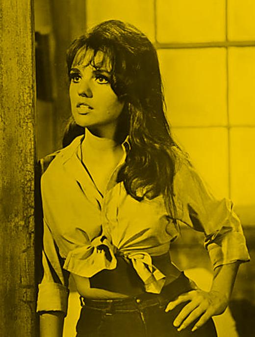 Dawn Wells Sexy 04.jpg