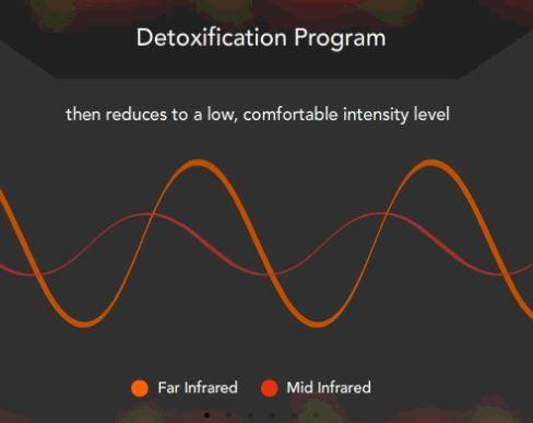 Detox 2.JPG