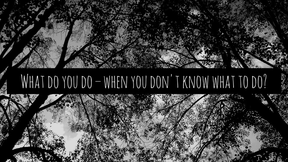 What do you do – when you don't know what to do-.jpg