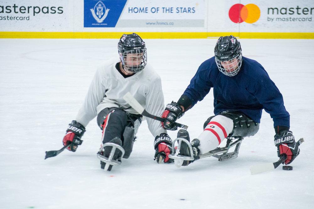 SledgeHockey_OnIce-57.jpg