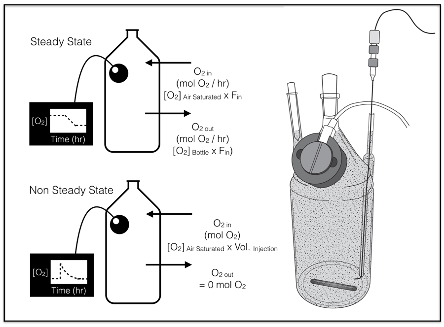 Above: Experimental setup for Ph.D. student  Aleisha Johnson's  low-O2 pyrite oxidation experiments.