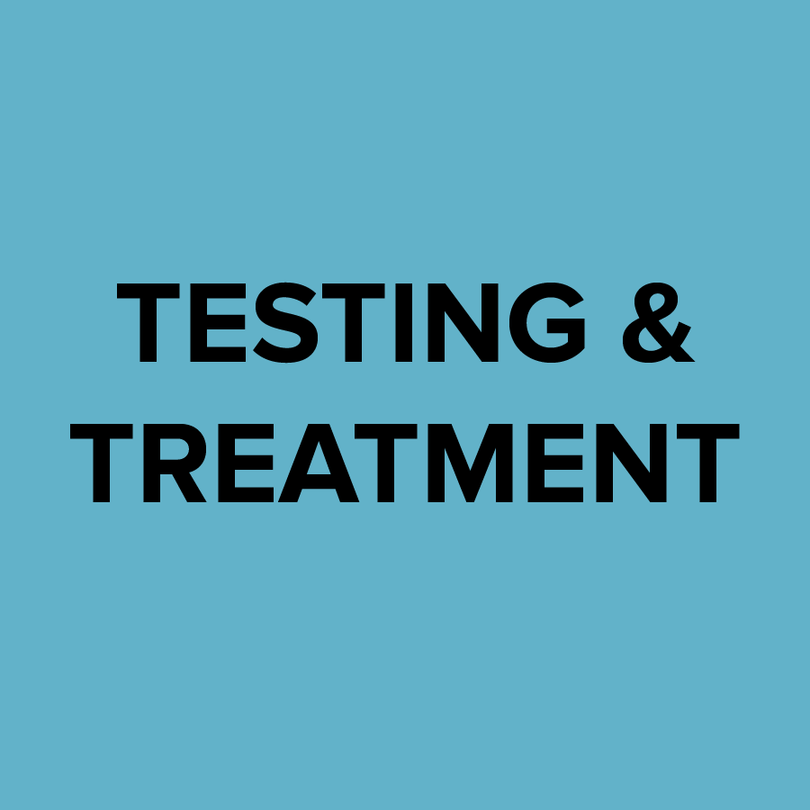 Lyme Advise: Testing and Treatment