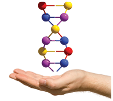 PCR testing Lyme Advise