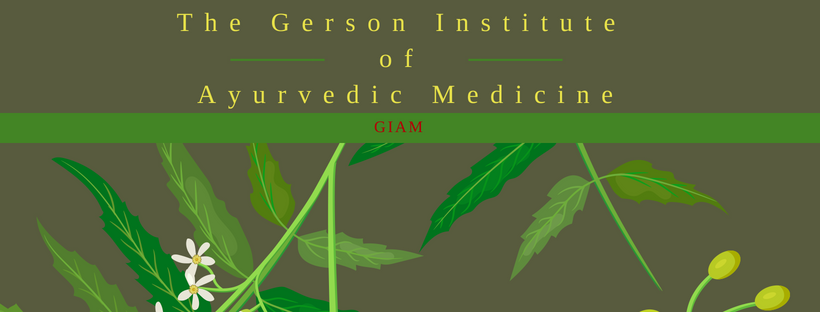 Copy of The Gerson Institute Of Ayurvedic Medicine (1).png