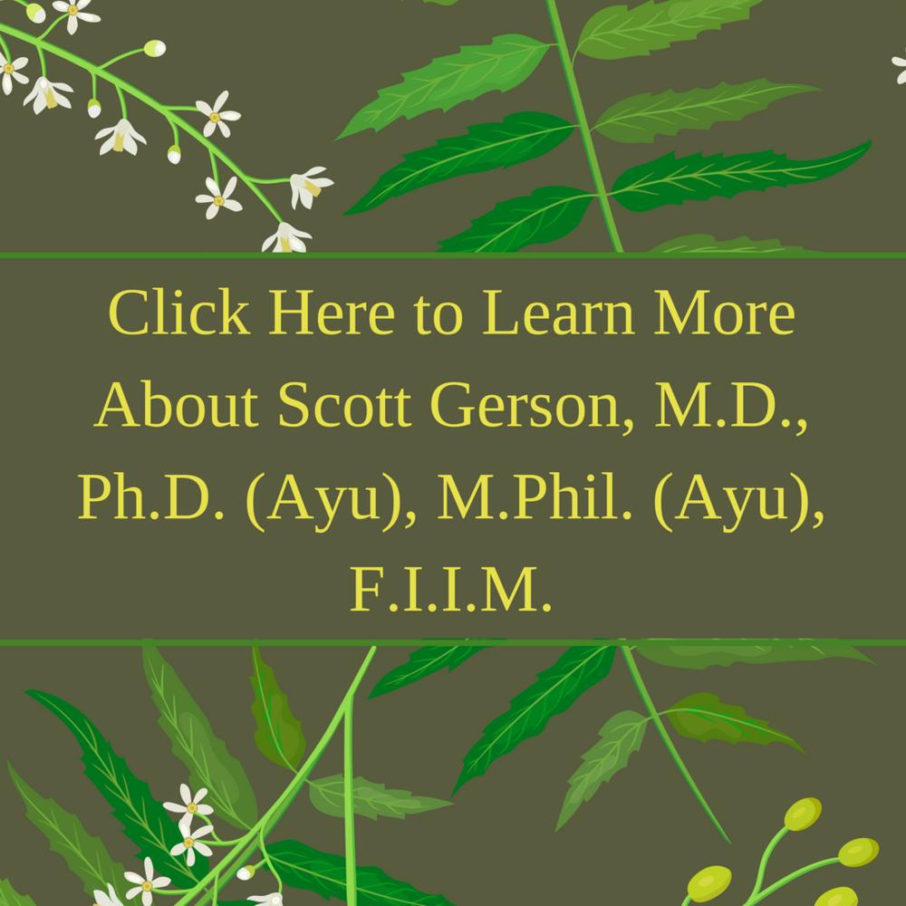 About Scott Gerson Ayurveda Lyme Advise