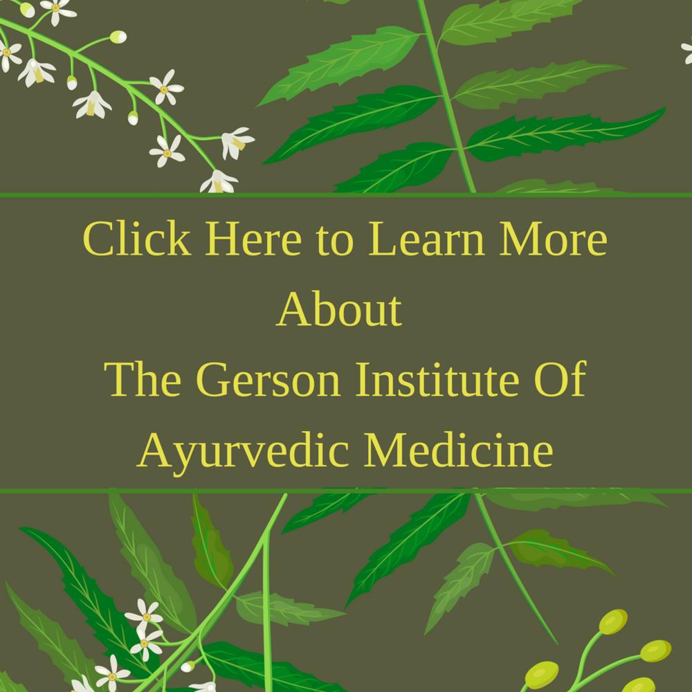 Gerson Institute Of Ayurvedic Medicine Lyme Advise