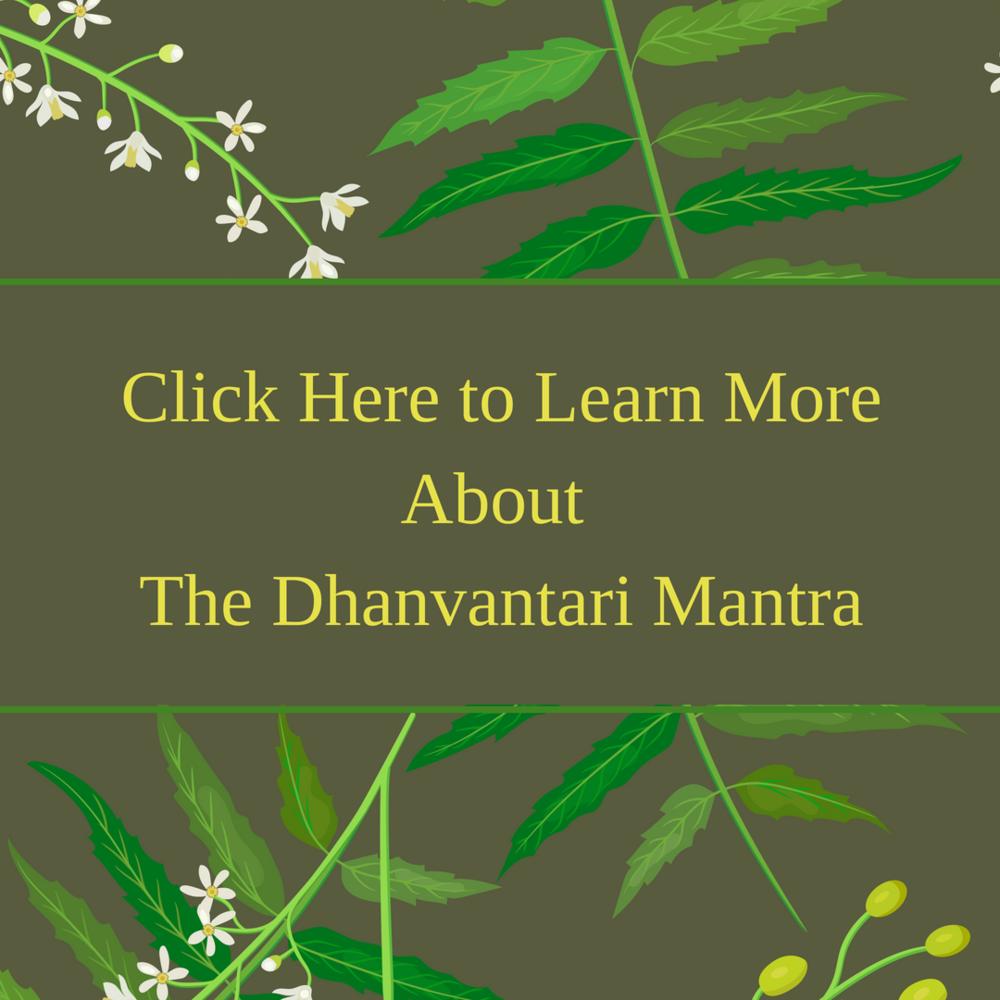 Gerson Institute Of Ayurvedic dhanvantari mantra lyme advise