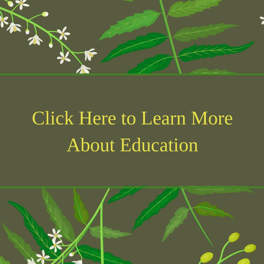 The Gerson Institute Of Ayurvedic Medicine Education Lyme Advise