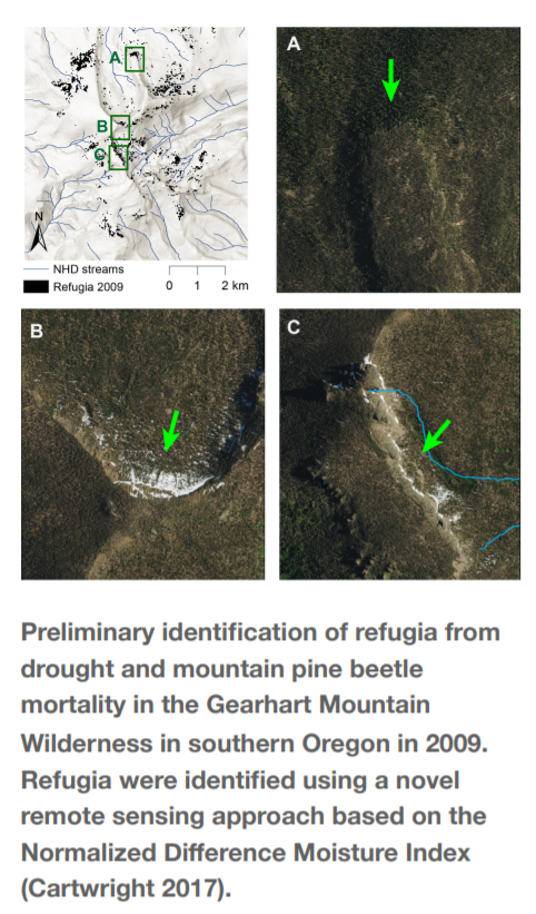 Preliminary identification of refugia from drought and mountain pine beetle mortality in the Gearhart Mountain Wilderness in southern Oregon in 2009. Refugia were identified using a novel remote sensing approach based on the Normalized Difference Moisture Index.