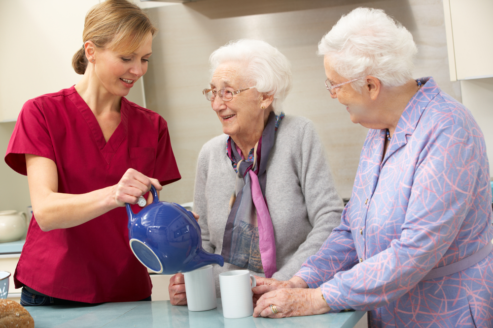 Assisted Living Service