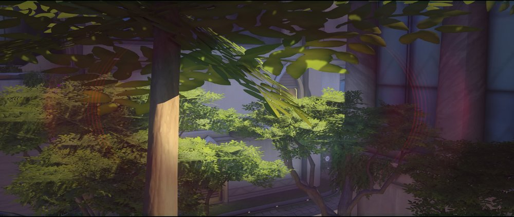 Final area tree counter window defense Widowmaker sniping spot Numbani Overwatch.jpg