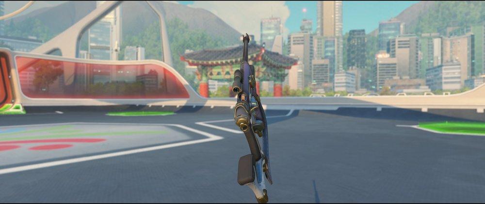 Cabana gun back legendary skin Ana Summer Games.jpg