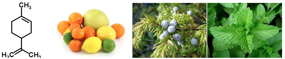 Terpene most prevalent in citrus fruits, juniper berries and peppermint.