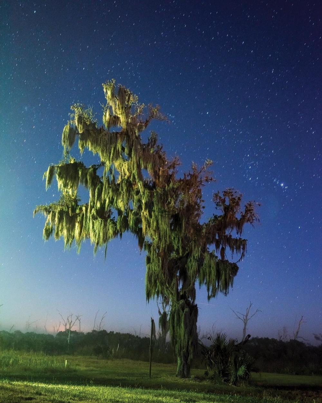 exposure-terttu-uibopuu-v23n1-body-image-1458068304-size_1000.jpg