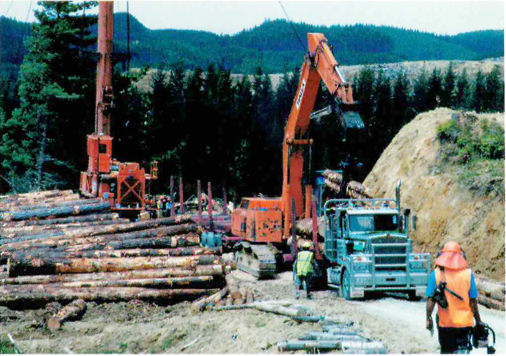 Forestry 2.png