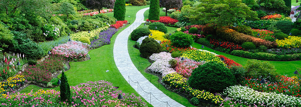 Impressive Garden And Landscape Design Garden Landscape Design