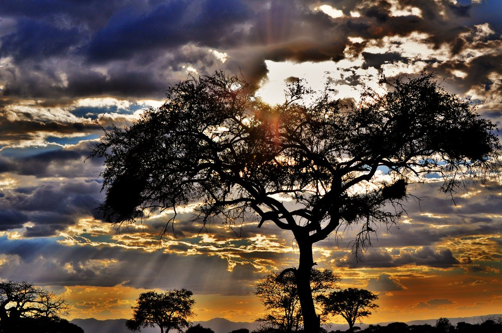 sunset-over-the-serengeti_5462655083_o.jpg