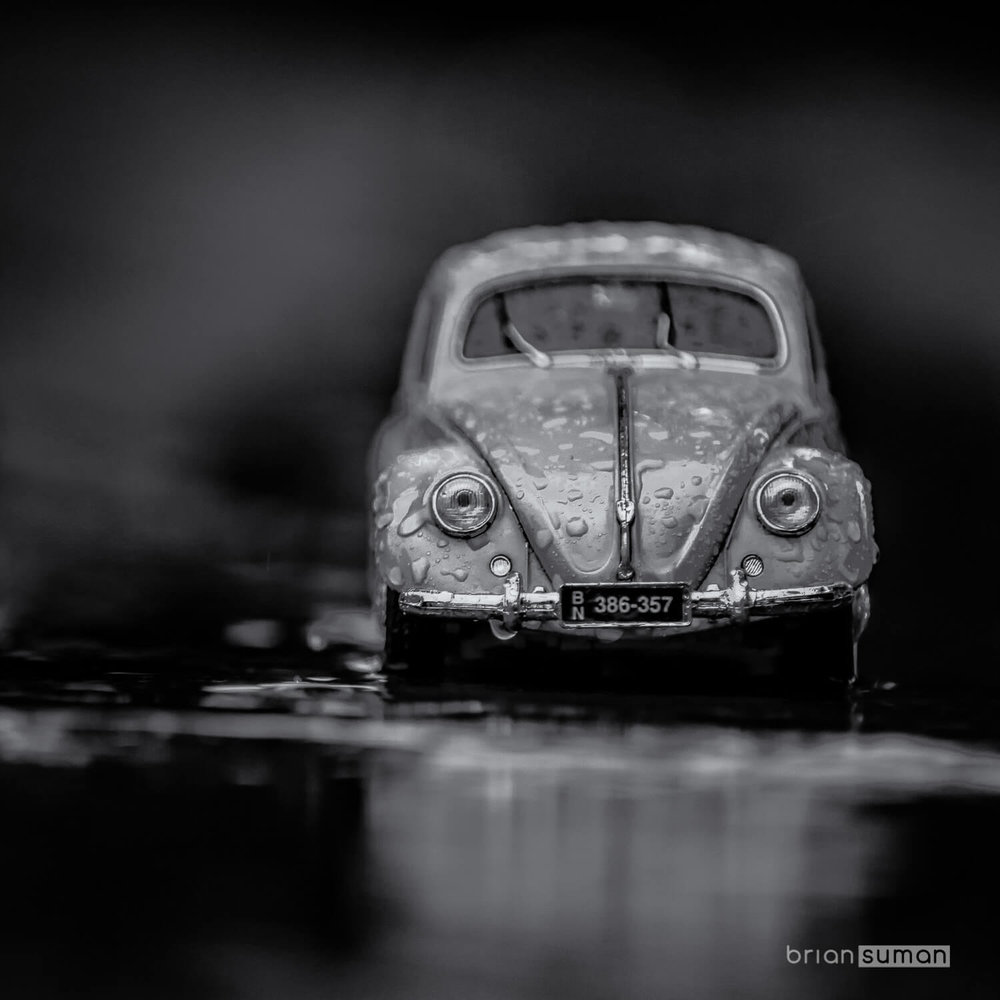 Rain Beetle-0001-Brian Suman Photography.jpg
