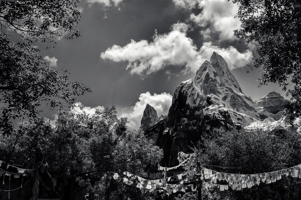 Expedition Everest-0001-Brian Suman Photography.jpg