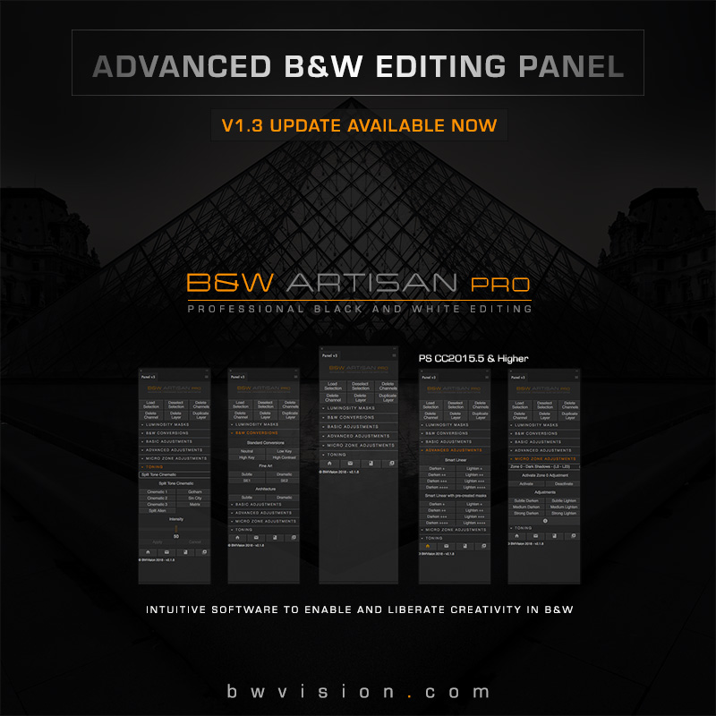 BW-Artisan-Pro-banner-2018-4-V1.3-800px.jpg