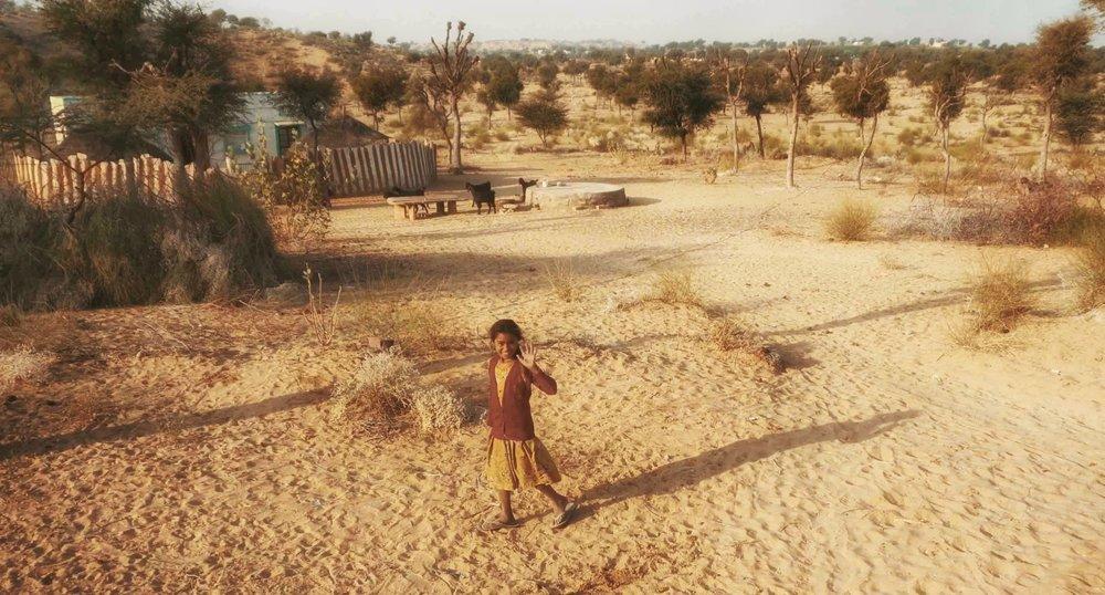 india-8.jpg