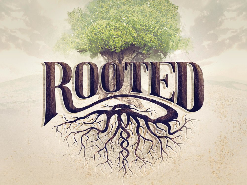 Rooted_cropped_no-banner.jpg