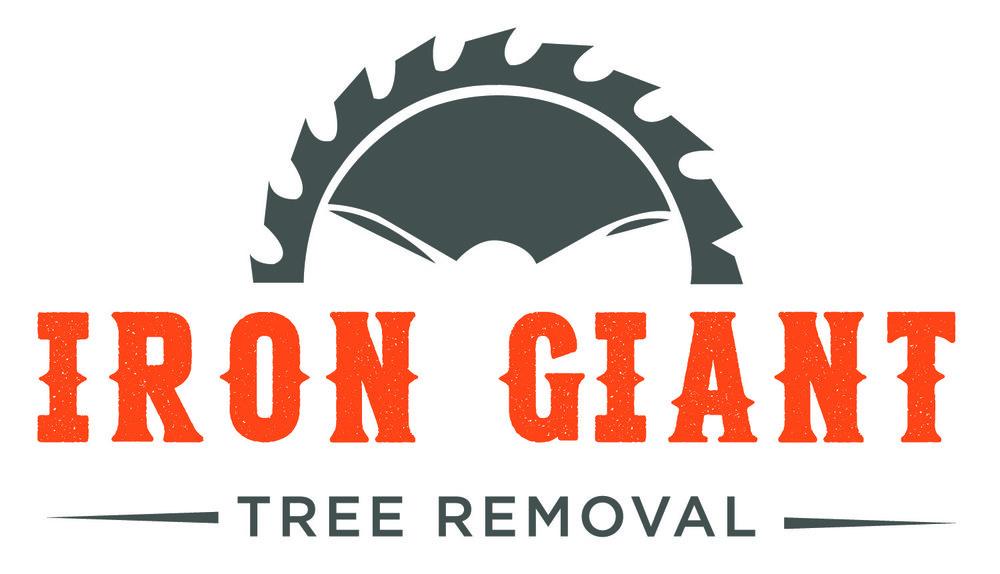 Iron Giant - Logo.jpg