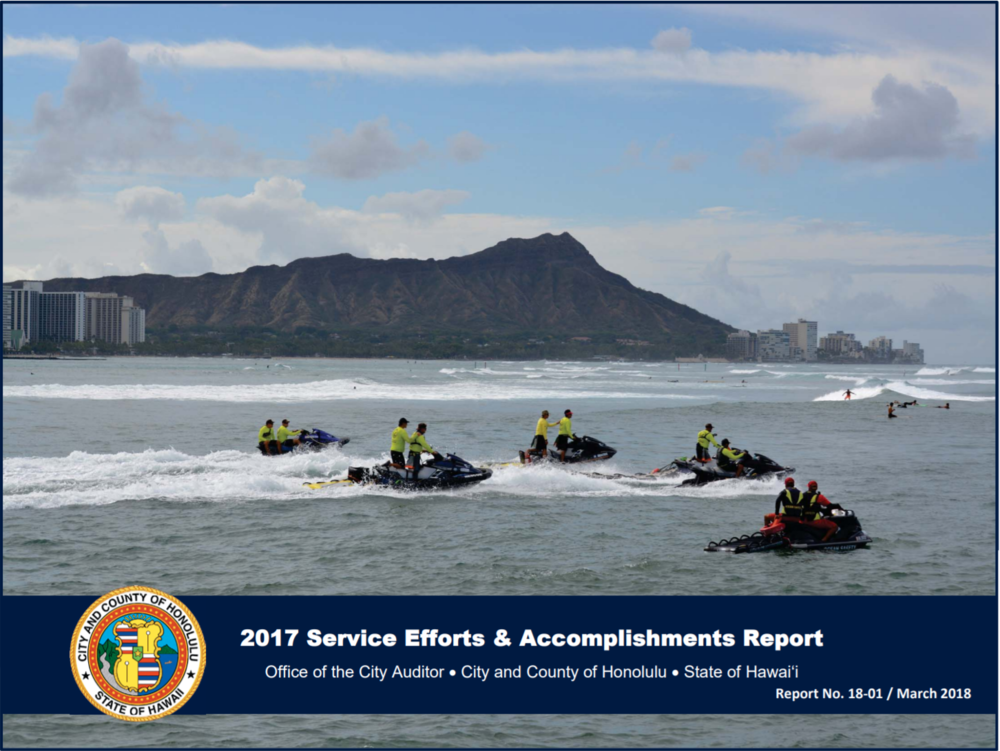 2017 Service Efforts & Accomplishments Report.PNG