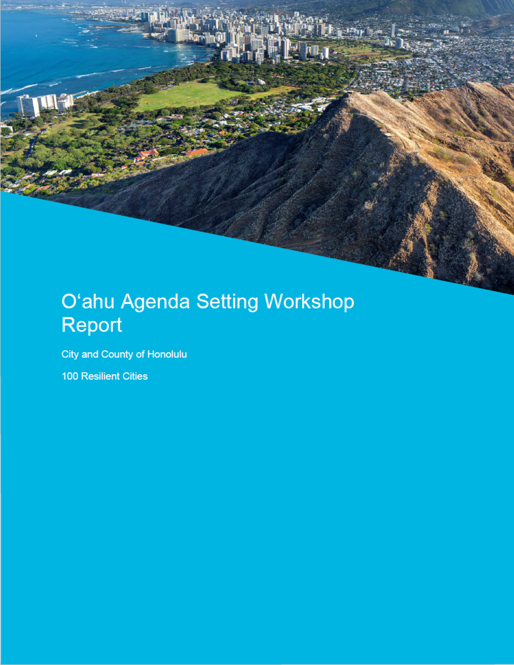 Agenda Setting Workshop Full Report Cover.PN