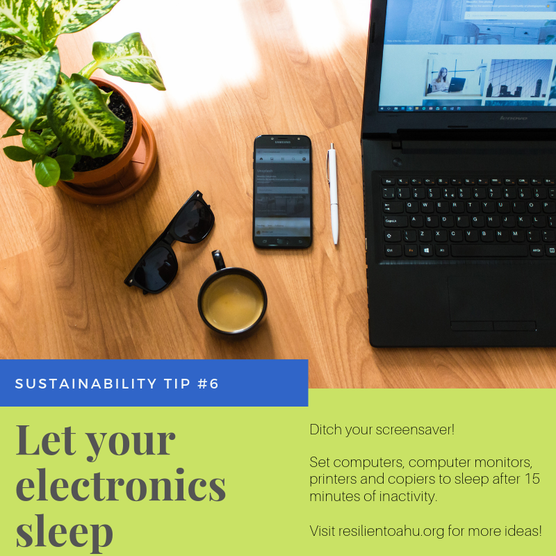 Sustainability Tip #6 (1).png