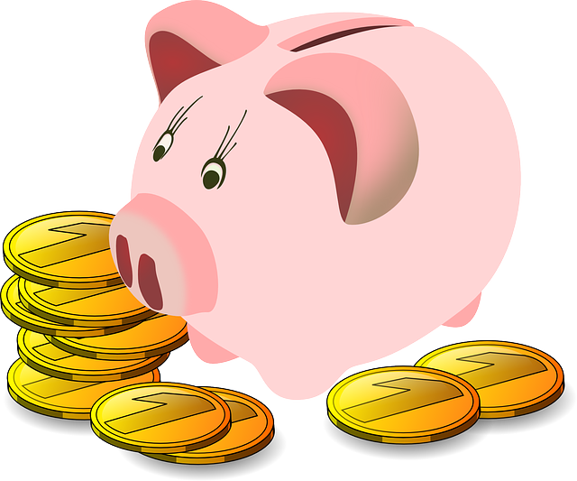 maxpixel.freegreatpicture.com-Savings-Finance-Piggy-Bank-Pig-Money-Savings-Box-161876.png
