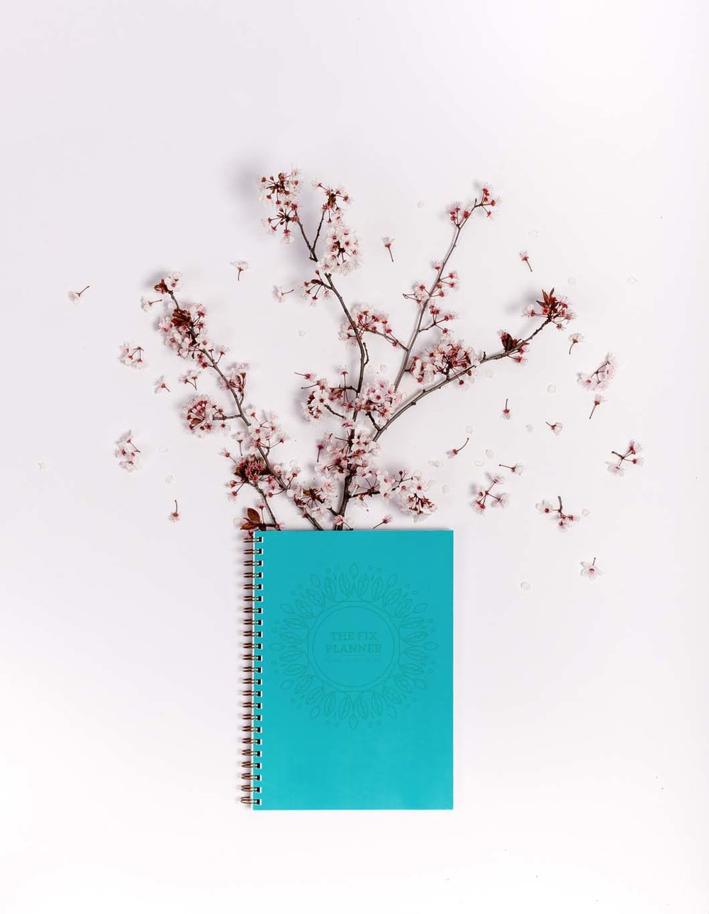 Spiral notepad with cherry blossom branch