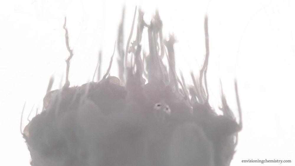 Osmotic Growth_10_1.jpg