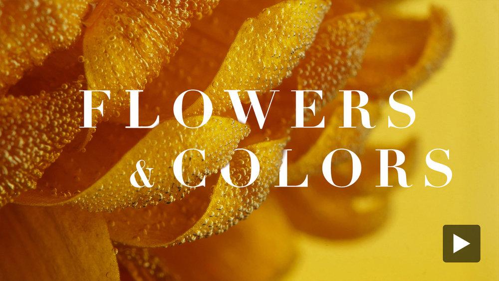 Flowers_Colors.jpg
