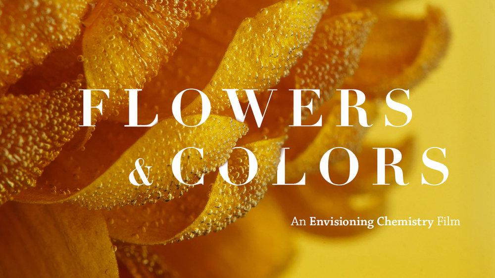 Flowers & Colors