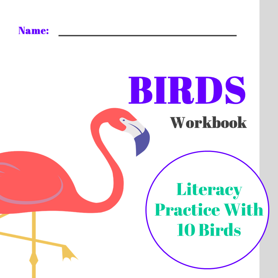 Birds Printable Worksheets Forward Thinking Curriculum