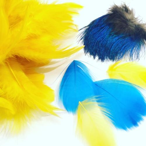 Le travail de la plume sur un bijou - Vous apprendrez les techniques de plumasserie pour habiller un bijou auprès de la créatrice de bijoux et plumassière Ana Gold.Vous créerez un sautoir en plumes d'autruches : vous choisirez la teinture des plumes, vous créerez le pompon et monterez le sautoir.Vous créerez une broche àfleurs ou des boucles d'oreille (clou d'oreille ou clip):sciage du laiton, martelage, soudure, réalisation de fleurs en plumes puis montage.