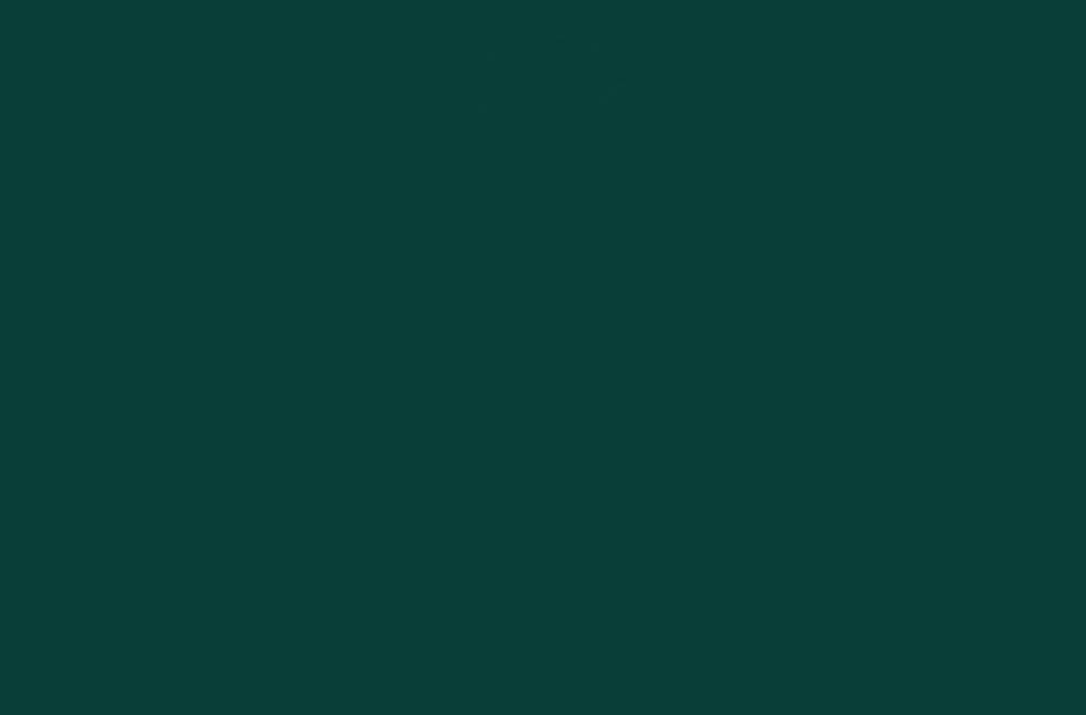 Neurochirurgia Villa Stuart Roma
