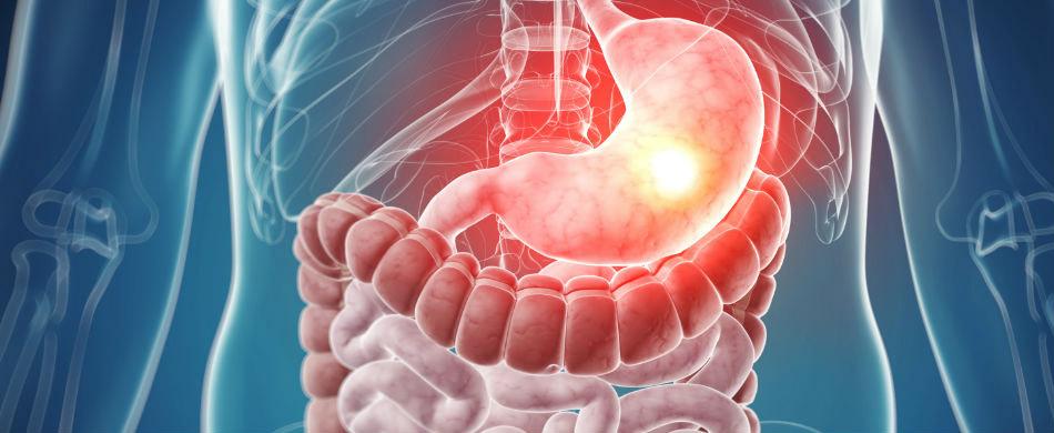 2-villa-stuart-servizi-sanitari-Gastroenterologia.jpg