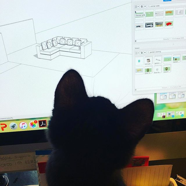 Designing on sketchup whilst Bobby the kitten attacks the curser on my screen!