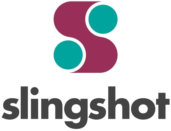 Slingshot-560x4291.jpg